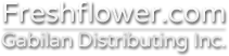 Wholesale Flower Distribution Services